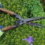 Find Landscaper near Sawley