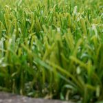 Wiswell Turfing Companies